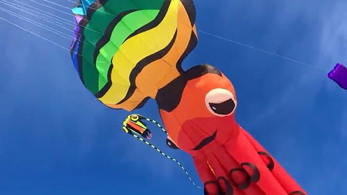kiteFestival